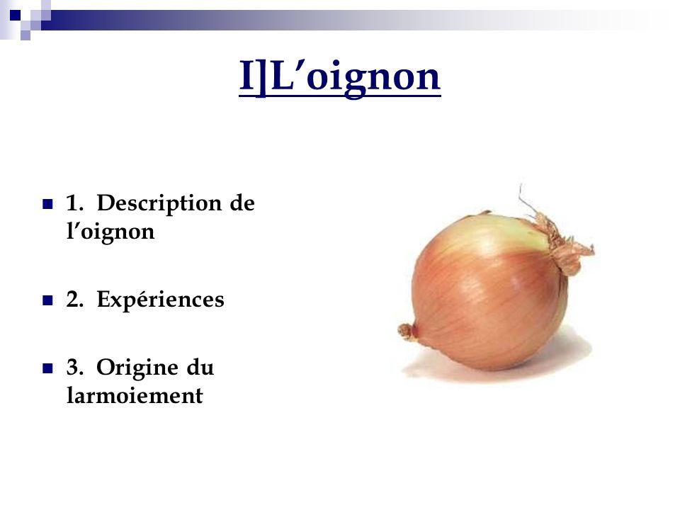 I]L'oignon 1. Description de l'oignon 2. Expériences